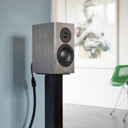 Dynaudio Special Forty close-up Lifestyle Grey Birch 02